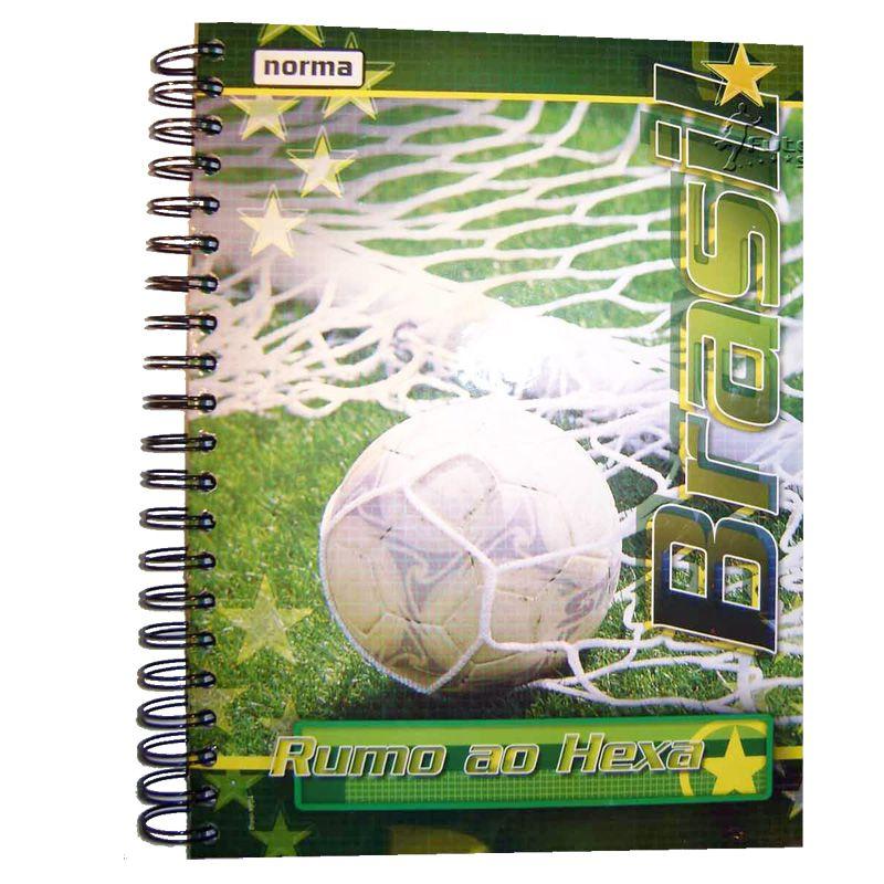 Caderno Universitário 10 Matérias do Brasil - Norma