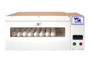 Chocadeira SEMI NOVA para até 50 ovos automática e elétrica