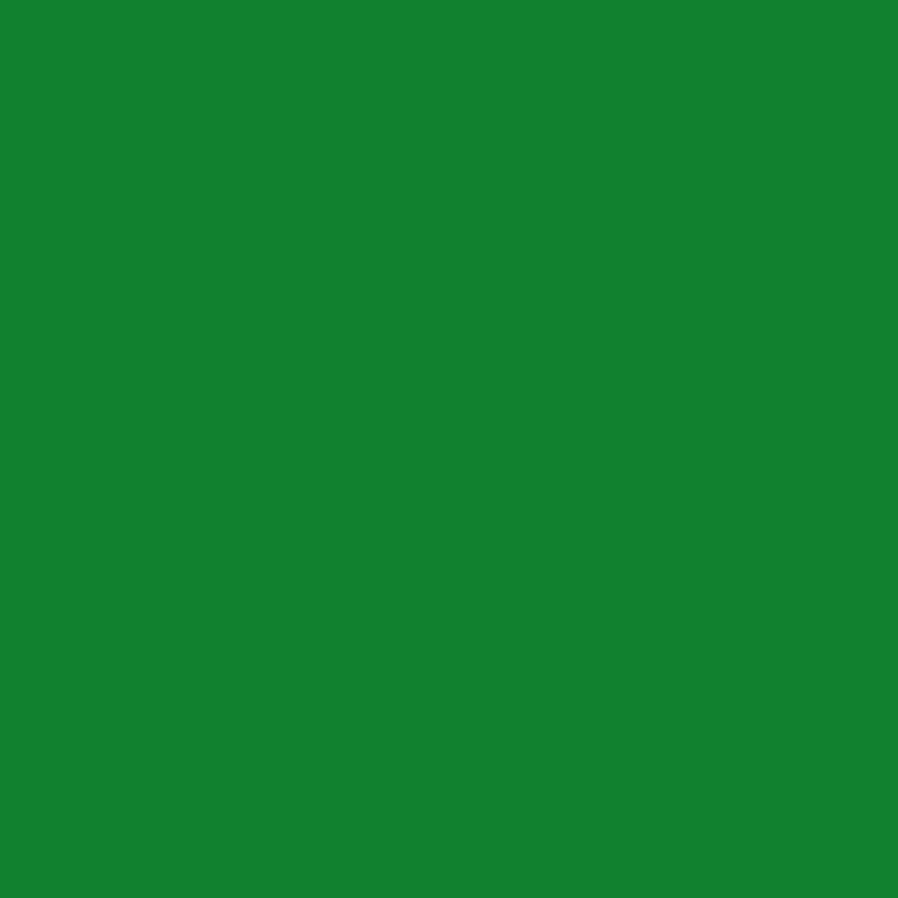 Folha EVA Lisa Verde Bandeira 1,5mm 40x60cm BRW - PE6018