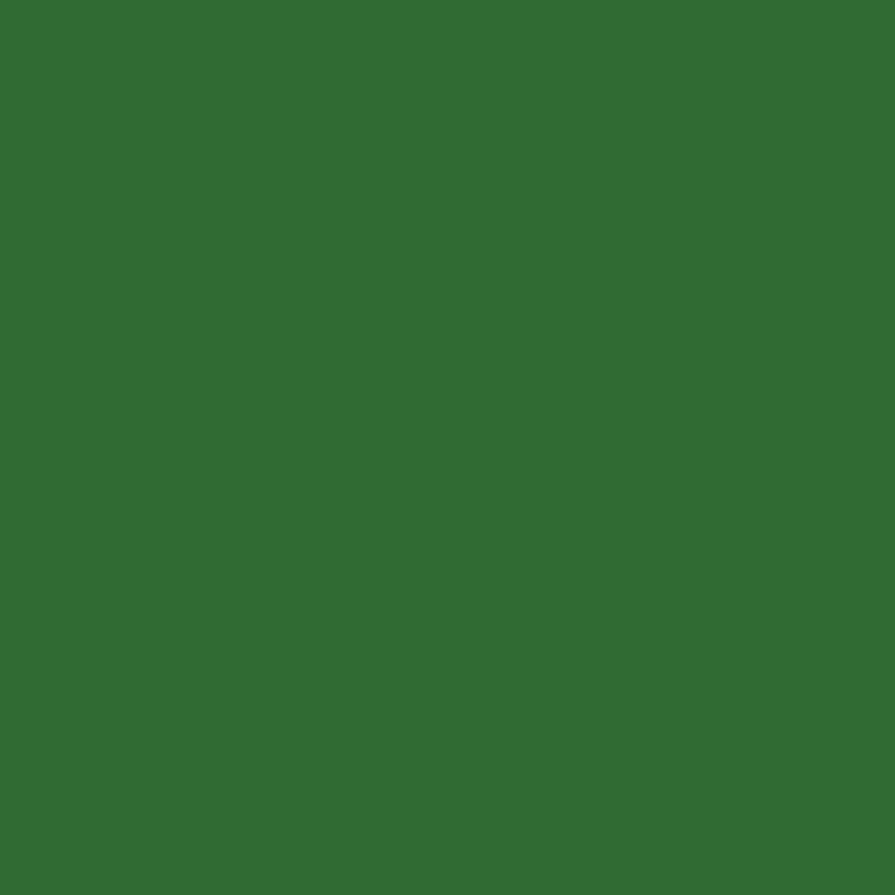 Folha EVA Lisa Verde Folha 1,5mm 40x60cm BRW - EV0616