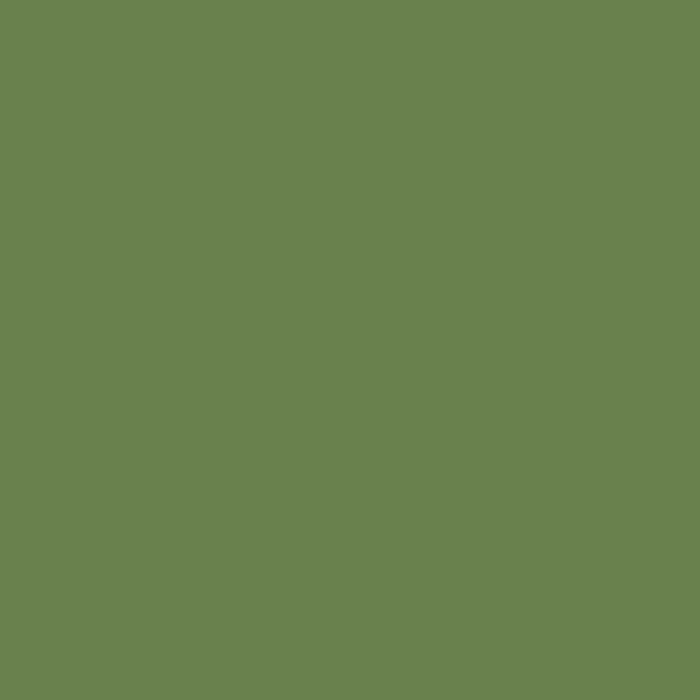 Folha EVA Lisa Verde Musgo 1,5mm 40x60cm BRW - EV0619