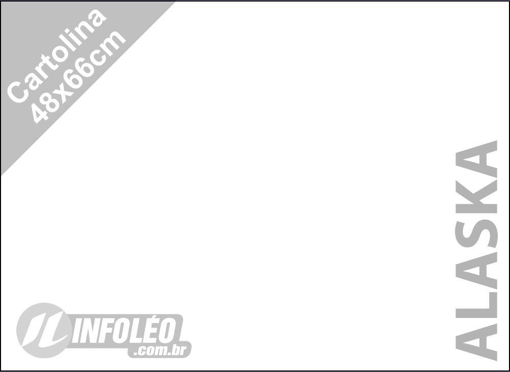 Papel Cartolina Alaska Color Plus 48x66cm 180 gramas (Apenas Motoboy)