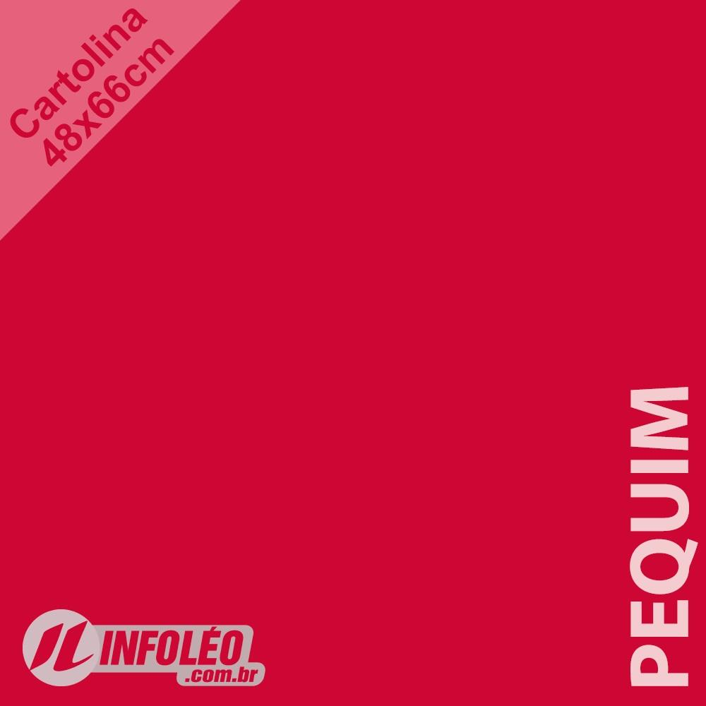Papel Cartolina Pequim Color Plus 48x66cm 180 gramas (Apenas Motoboy)