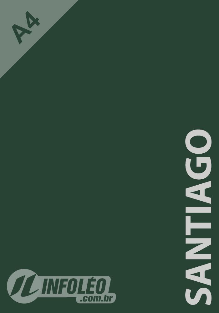 Papel Color Plus A4 180 gramas Santiago (Verde Musgo)