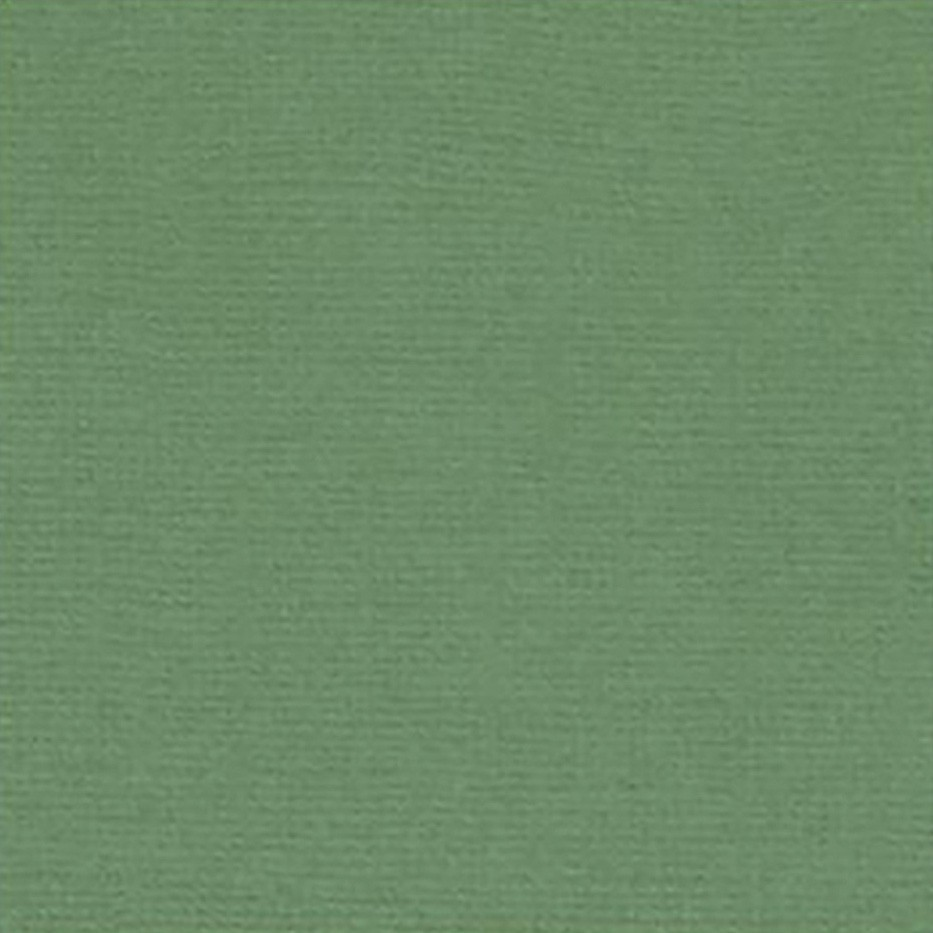Papel Toke e Crie Cardstock Verde Mata - PCAR031