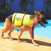 Colete Salva Vidas Pet G - Ativa