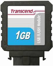 Módulo USB Flash 1GB Vertical