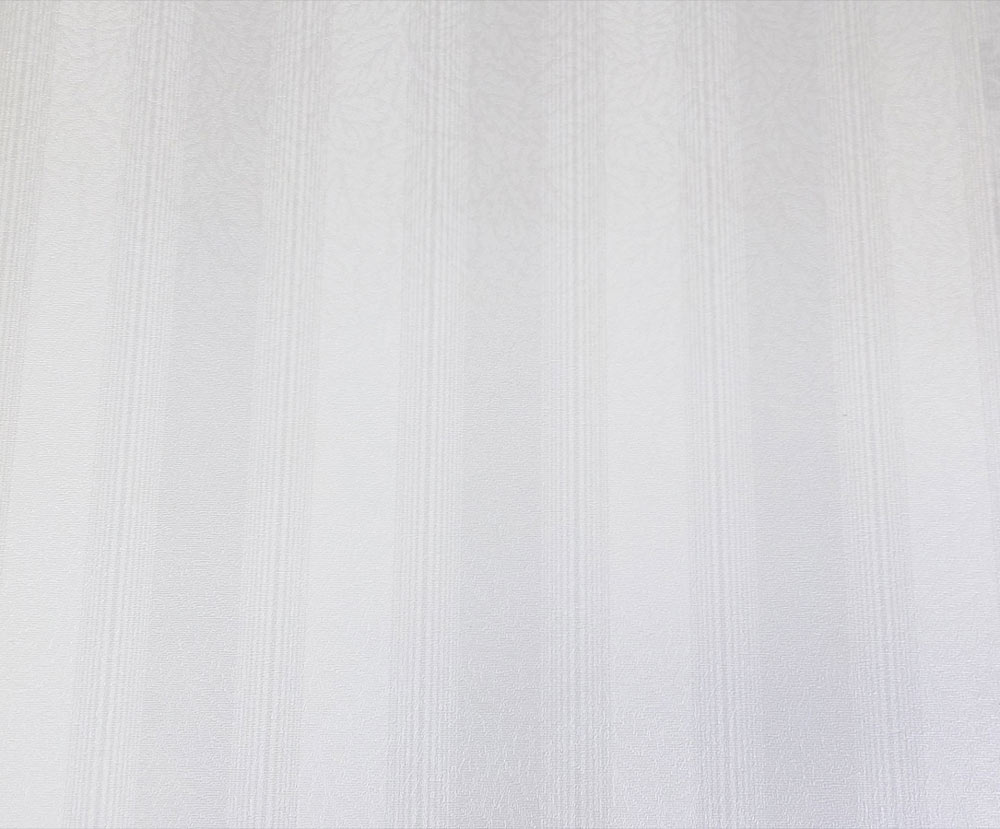 Papel de Parede Branco Gelo SB1113501