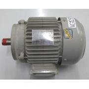 Motor de Indução Trifásico Eberle 1/2cv 8 Pólos - VG1297 Seminovo