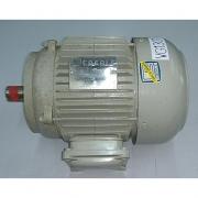 Motor de Indução Trifásico Eberle 1/2cv 8 Pólos - VG1301 Seminovo