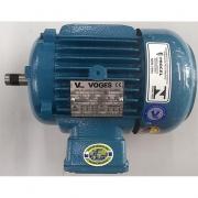 Motor de Indução Trifásico Voges 1.5 CV 2 pólos - VG1363 Seminovo
