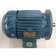 Motor de Indução Trifásico Voges 3 CV 4 pólos - VG1362 Seminovo
