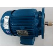 Motor de indução trifásico Voges 3 CV 4 pólos - VG1389 Seminovo