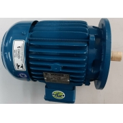 Motor de indução trifásico Voges 3 CV 4 pólos - VG1390 Seminovo