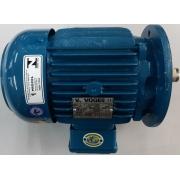 Motor de indução trifásico Voges 3 CV 4 pólos - VG1392 Seminovo