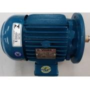Motor de indução trifásico Voges 3 CV 4 pólos - VG1431 Seminovo
