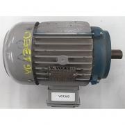 Motor de Indução Trifásico Voges 3 CV 6 pólos - VG1360 Usado