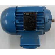Motor de indução trifásico WEG 0.33 CV 4 pólos - VG1366 Seminovo