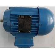 Motor de indução trifásico WEG 0.33 CV 6 pólos - VG1387 Seminovo