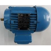 Motor de indução trifásico WEG 0.50 CV 4 pólos - VG1368 Seminovo