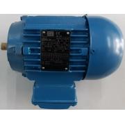 Motor de indução trifásico WEG 0.50 CV 4 Pólos - VG1407 Usado