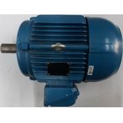 Motor de indução trifásico WEG 10 CV 4 pólos - VG1395 Seminovo