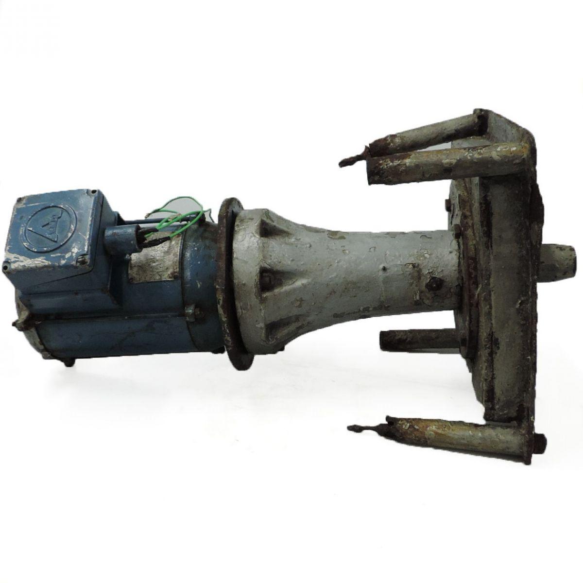 Batedor Com Acoplamento F10 - 0,5 HP 1110 RPM