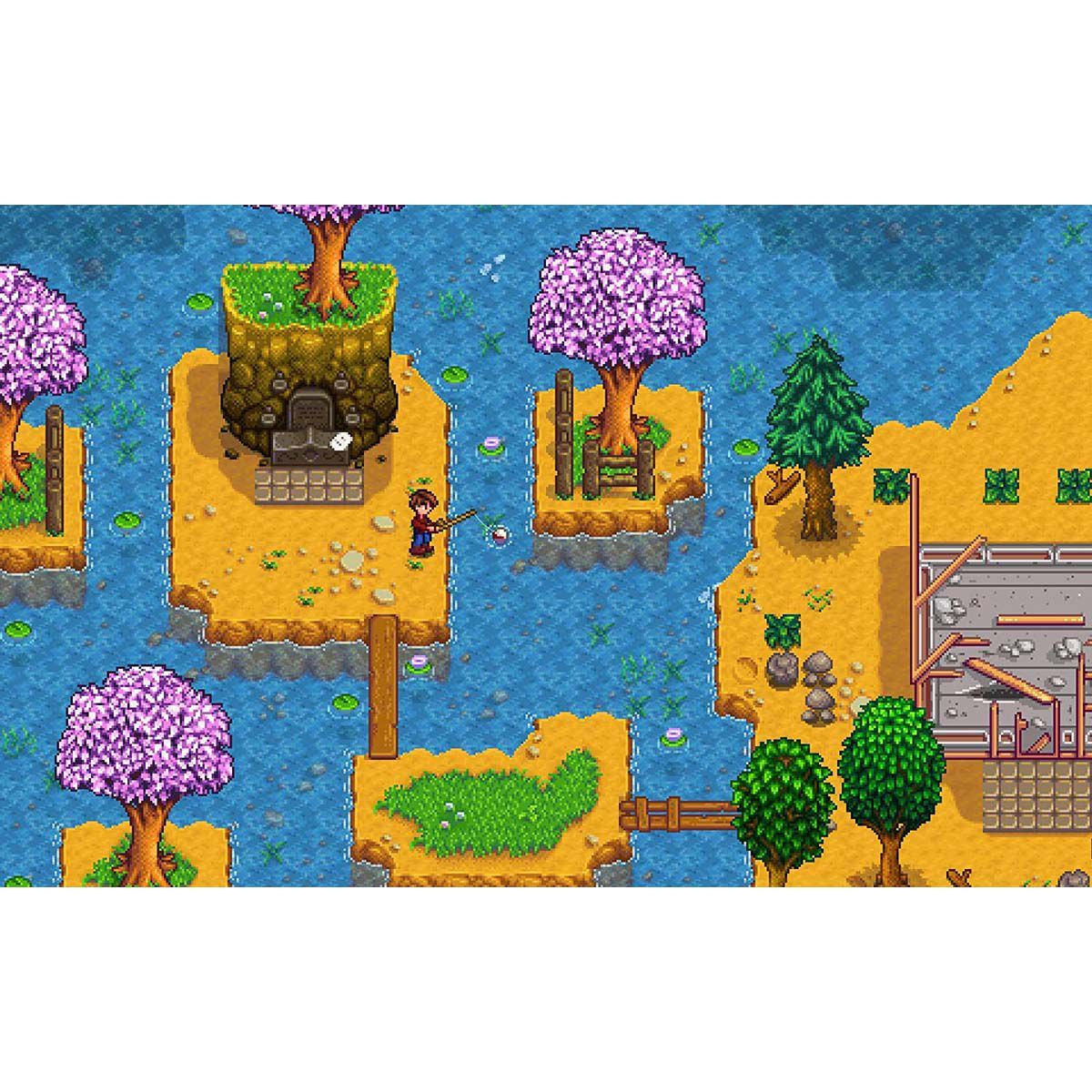 Stardew Valley Collector's Edition - Xbox One