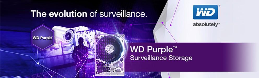 HD Interno WD Purple 1 TB Ideal para vigilância 24hs - JS Soluções em Segurança