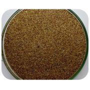 Sementes Grama Sabre III - Caixa com 0,5 kg