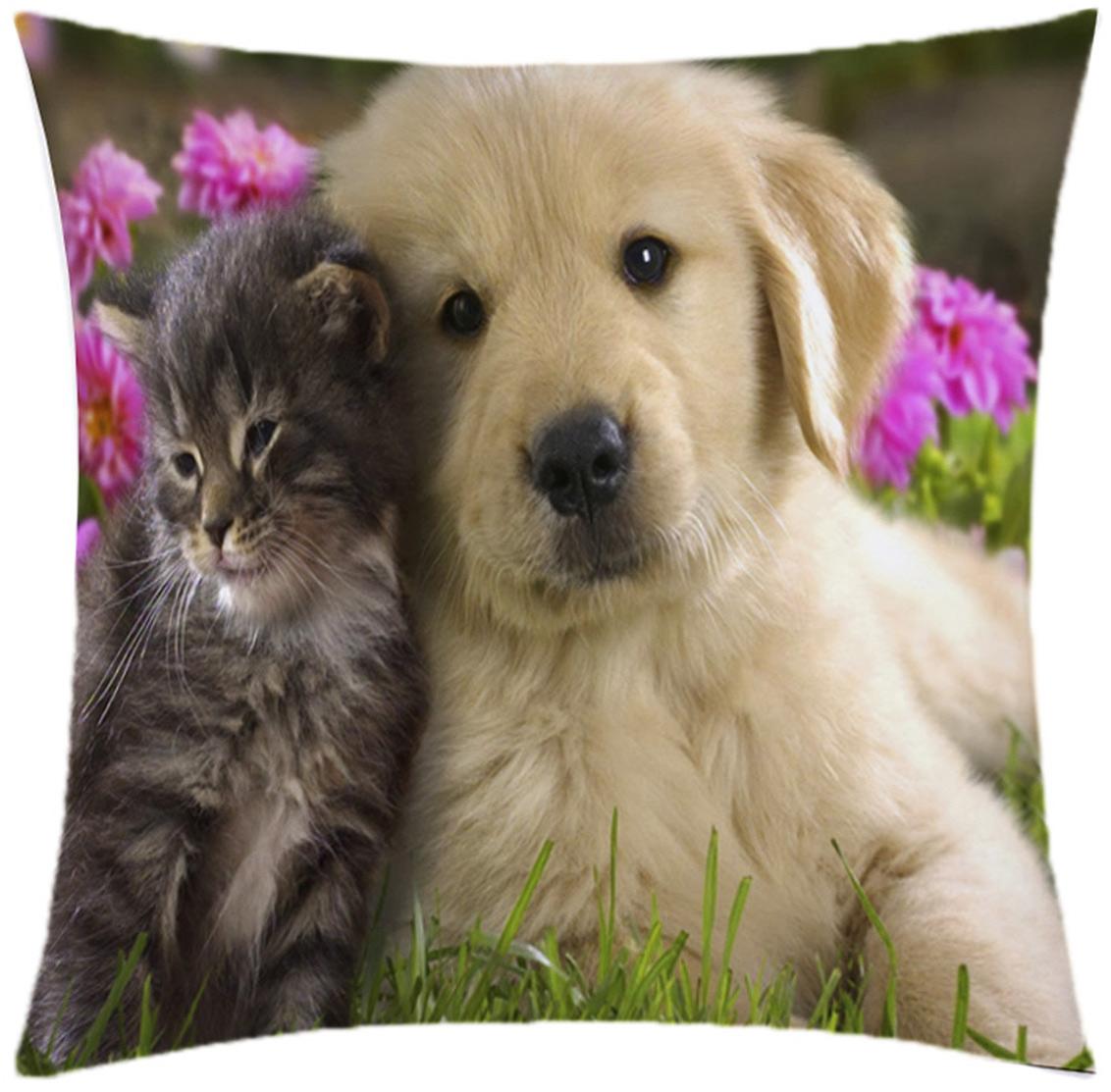 Almofada Desenhada Decoração Gatinho e Cachorrinho Juntos com 2 peças tecido Microfibra - Almofada Digital