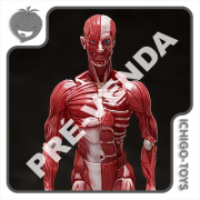PRÉ-VENDA 30/06/2022 (VALOR TOTAL R$ 706,00 - 10% PARA RESERVA*) Figma SP-142 - Human Anatomical Model