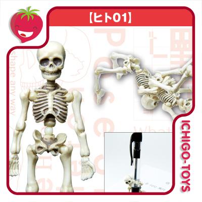 Re-ment Pose Skeleton - 01 Skeleton Human  - Ichigo-Toys Colecionáveis