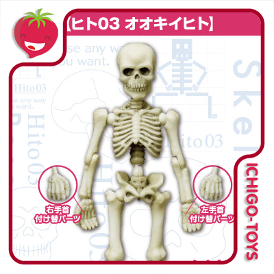 Re-ment Pose Skeleton - 03 Adult Human  - Ichigo-Toys Colecionáveis