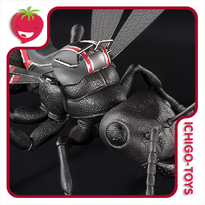 S.H. Figuarts - Flying Ant - Ant-Man and Wasp  - Ichigo-Toys Colecionáveis
