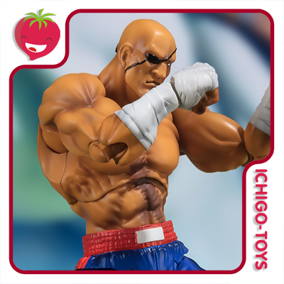 S.H. Figuarts Tamashii Web Exclusive - Sagat - Street Fighter_  - Ichigo-Toys Colecionáveis
