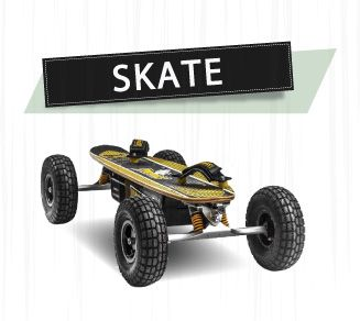 SKATE ELÉTRICO TWO DOGS OFF ROAD 800W G2  - Motosports