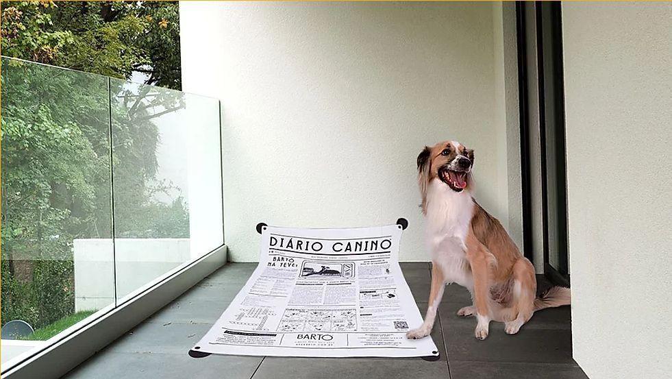 DIÁRIO CANINO MAIS