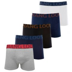 Cueca Hang Loose Boxer Cotton - HL1.01