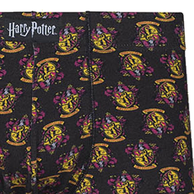 Cueca Boxer Cotton Harry Potter Grifinória Lupo Urban 16986-001