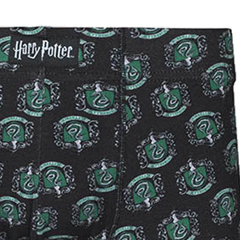 Cueca Boxer Cotton Harry Potter Sonserina Lupo Urban 16986-002