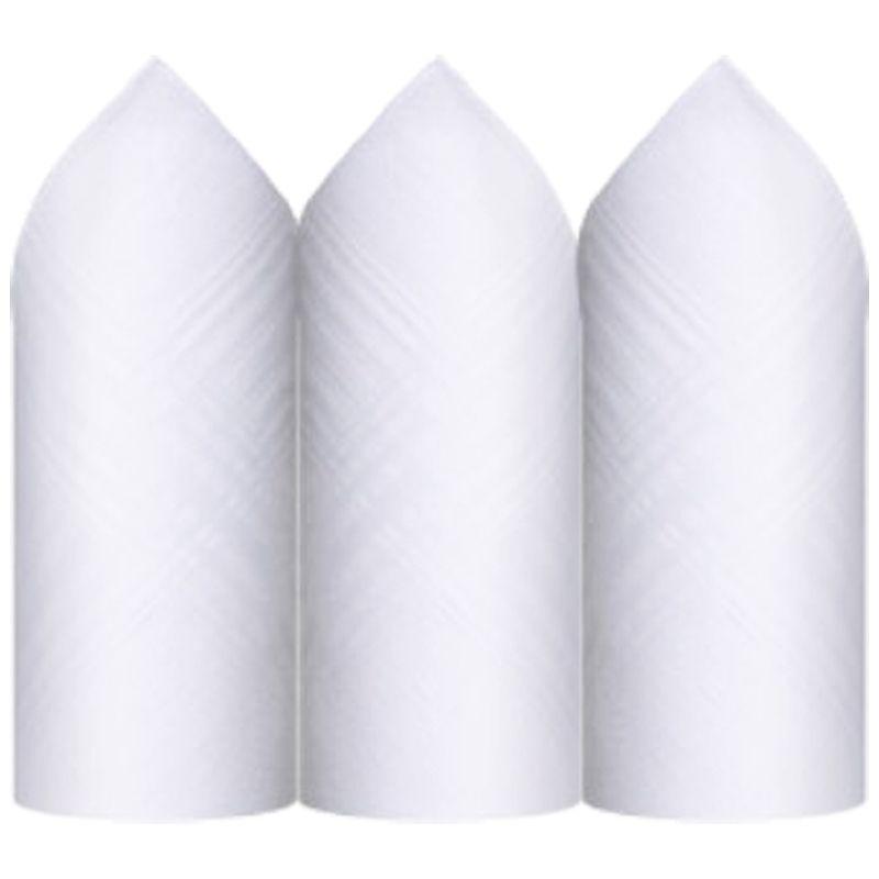 Lenço Premier 100% Algodão Branco C/3 32 x 32 cm - 2405