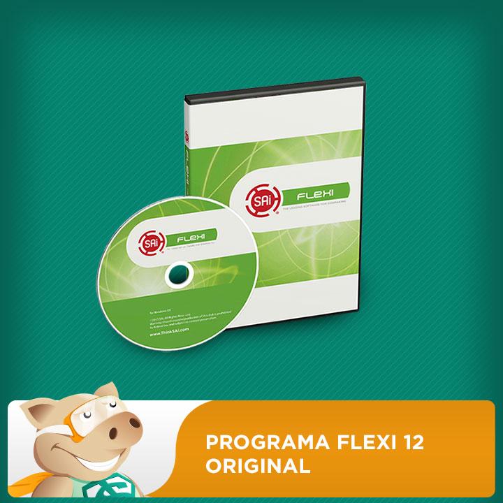 Programa Flexi 12 Original C/CD Para Plotter De Recorte De Diversos Modelos  - ECONOMIZOU
