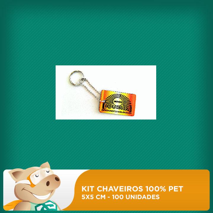 Chaveiro 100% PET - Retangular - 3,5x5cm - 100 unidades - 10 pacotes com 10 unidades   - ECONOMIZOU