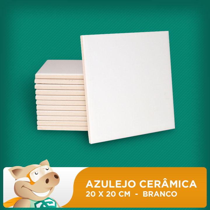 Azulejo Cerâmica Resinado - 20x20cm - 10 Unidades  - ECONOMIZOU