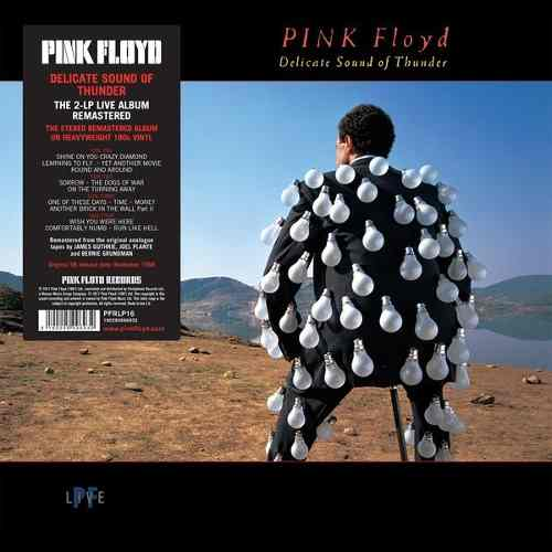 Lp Pink Floyd Delicate Sound Of Thunder Duplo 180g
