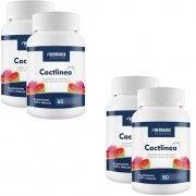 Cactlinea - Promoção 4 Unidades - Herbamix