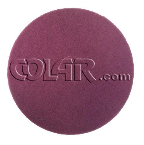 Disco de Limpeza Ecoplus Vinho  - COLAR