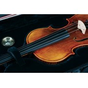 Violino Eagle VK544 4/4