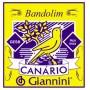 Encordoamento Canário GESB Bandolim c/ chenilha - Musical Perin